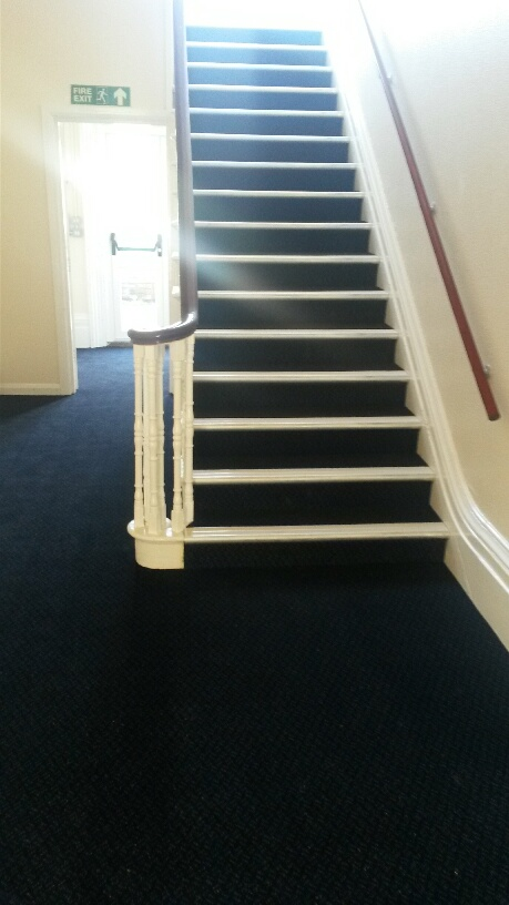 Gradus Stair Nosings And Scala Classic Carpet