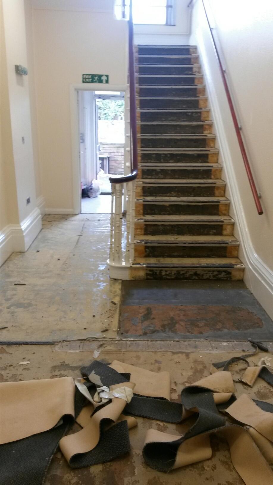 Gradus Stair Nosings And Scala Classic Carpet